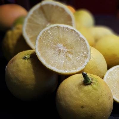 Ekologiczne owoce bergamotki 1 kg