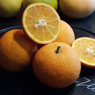 Ekologiczne owoce pomarańczy 1 kg